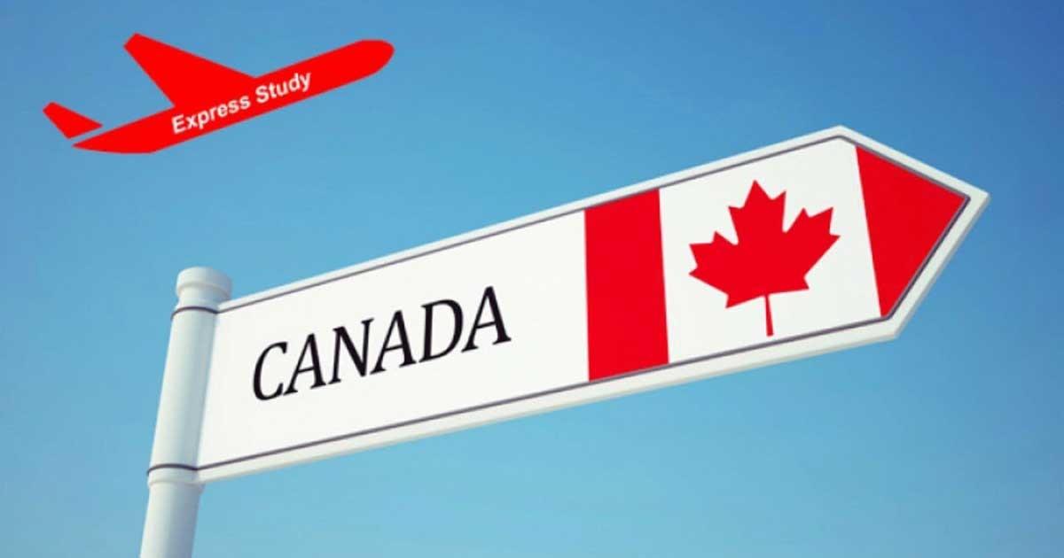 Du Hoc Canada 2020 Dieu Kien Chi Phi Thong Tin Nganh Hoc