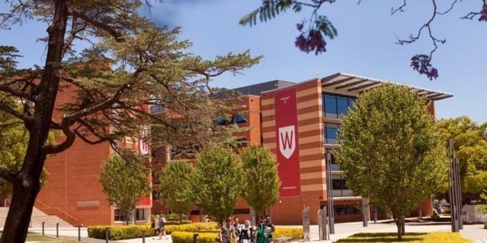 Trường Đại Học Western Sydney2