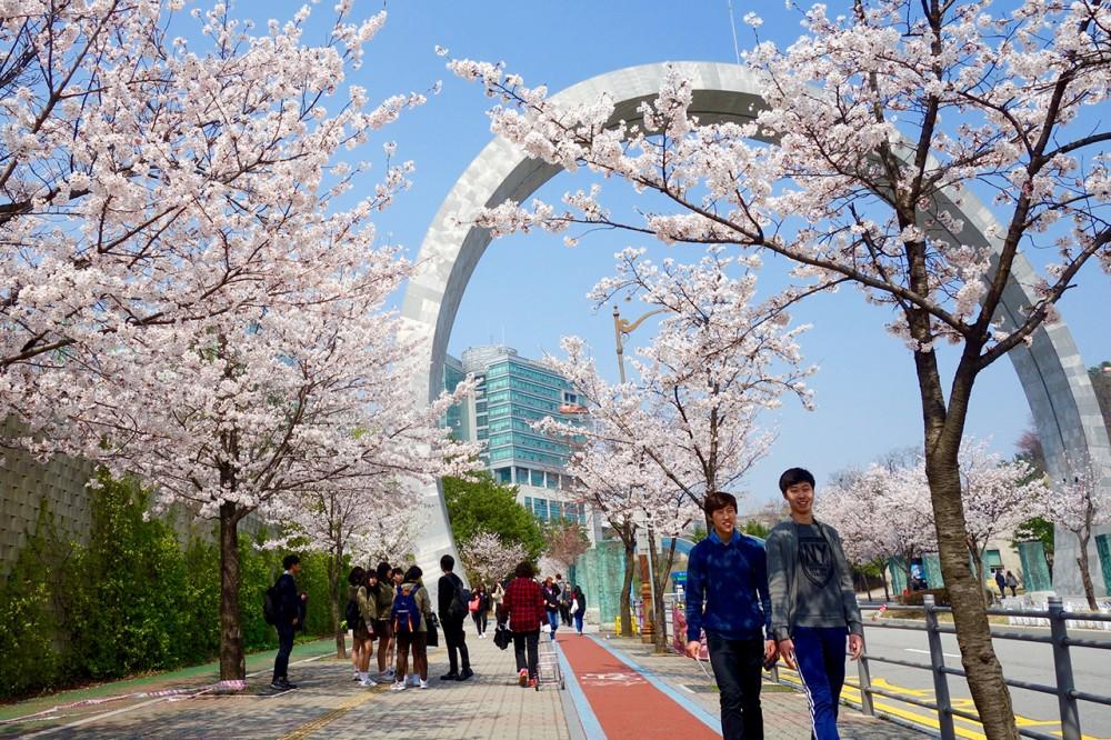 điều khiện học bổng nhật bản,Học bổng du học Nhật Bản 2020: Điều kiện nhận học bổng là gì?